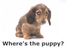 Puppysmall